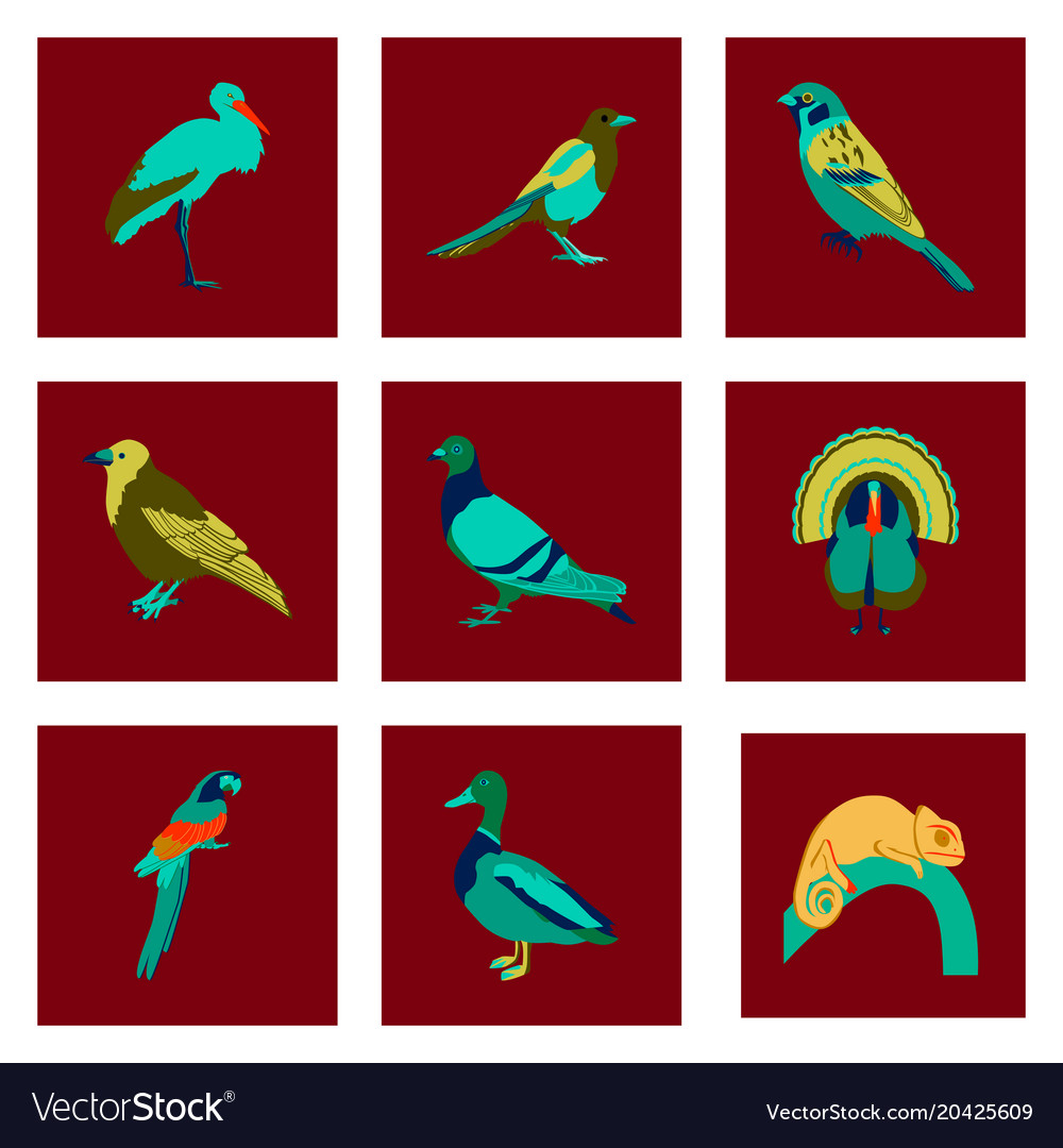 Set of in flat style birds