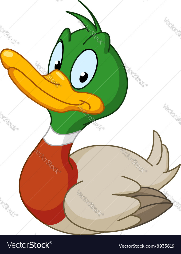 Smiling duck vector image