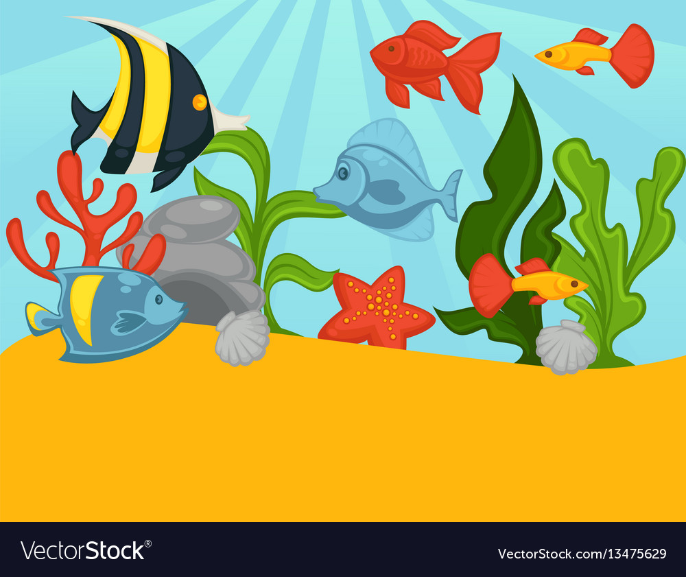 Aquarium tropical fishes and plants