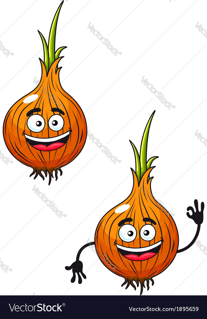 Cartoon happy smiling fresh onion