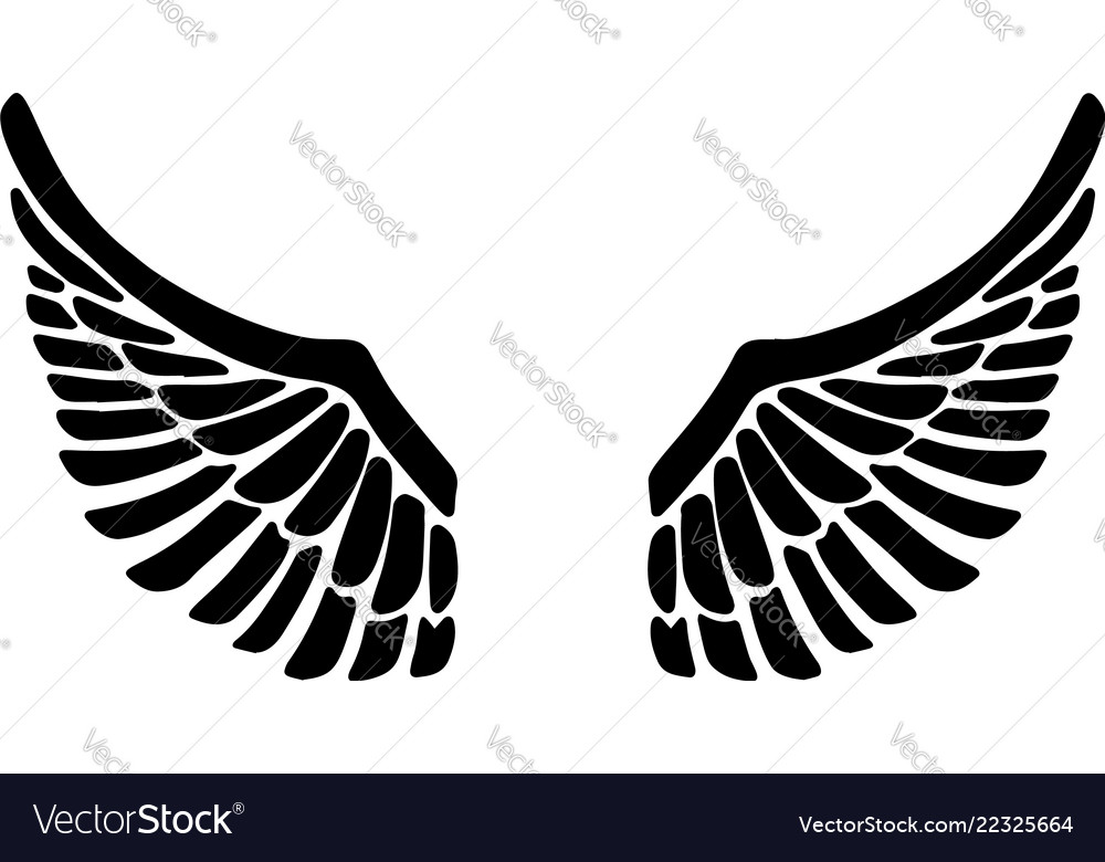 hand drawn eagle wings isolated on white vector image vectorstock