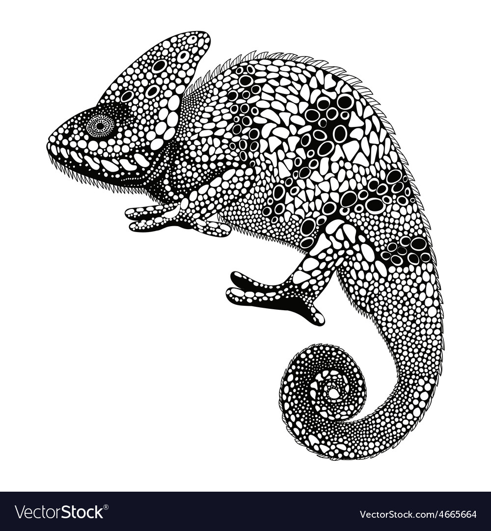 Zentangle stylized Chameleon Hand Drawn Reptile in