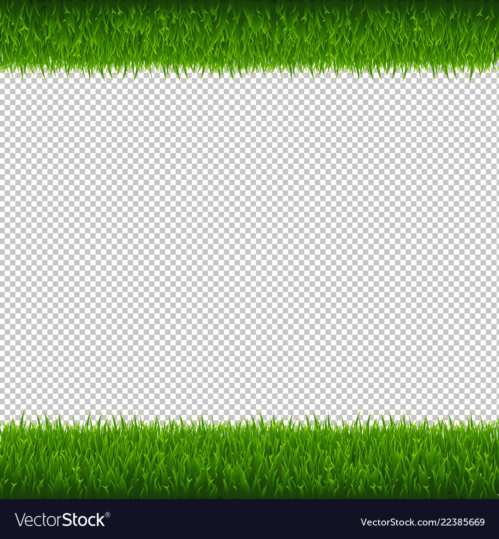 Green grass borders transparent background