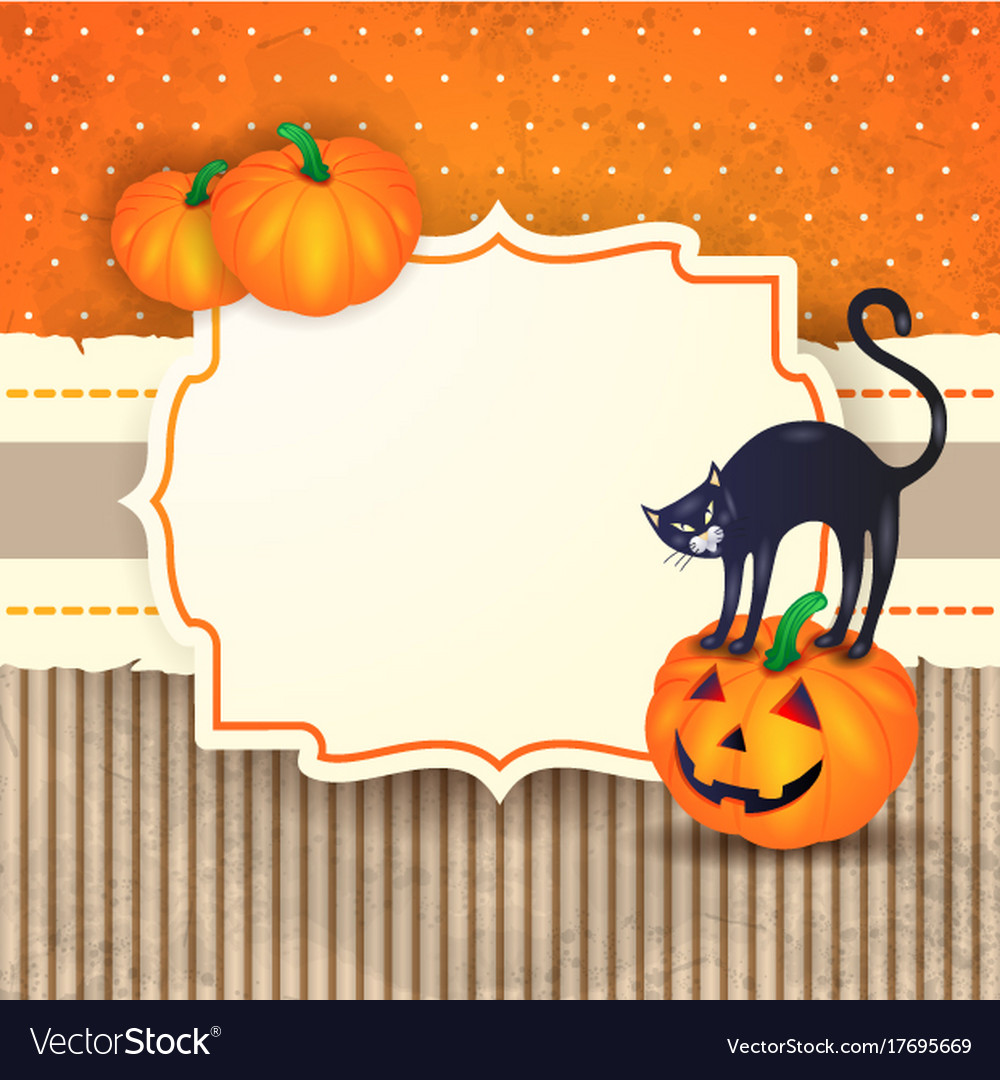 halloween background with label pumpkins and cat vector image