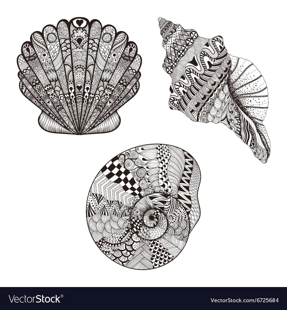 Zentangle stylized set seashells Hand Drawn
