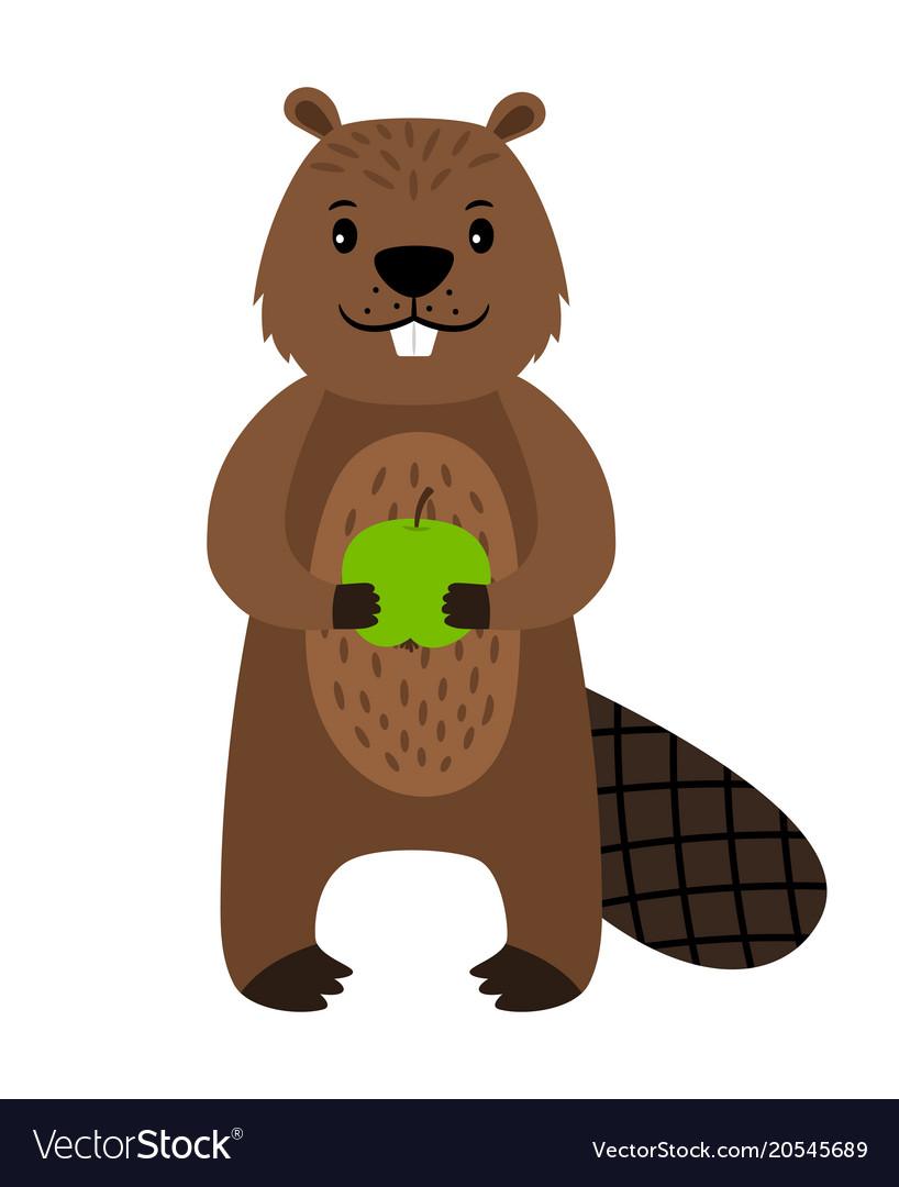 Beaver cartoon beaver character isolated