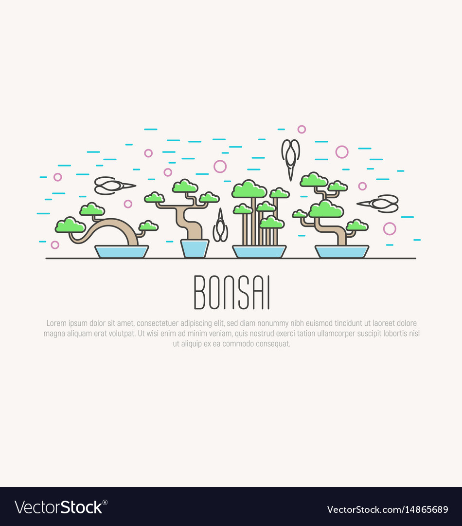 Set of flat miniature bonsai in pots with