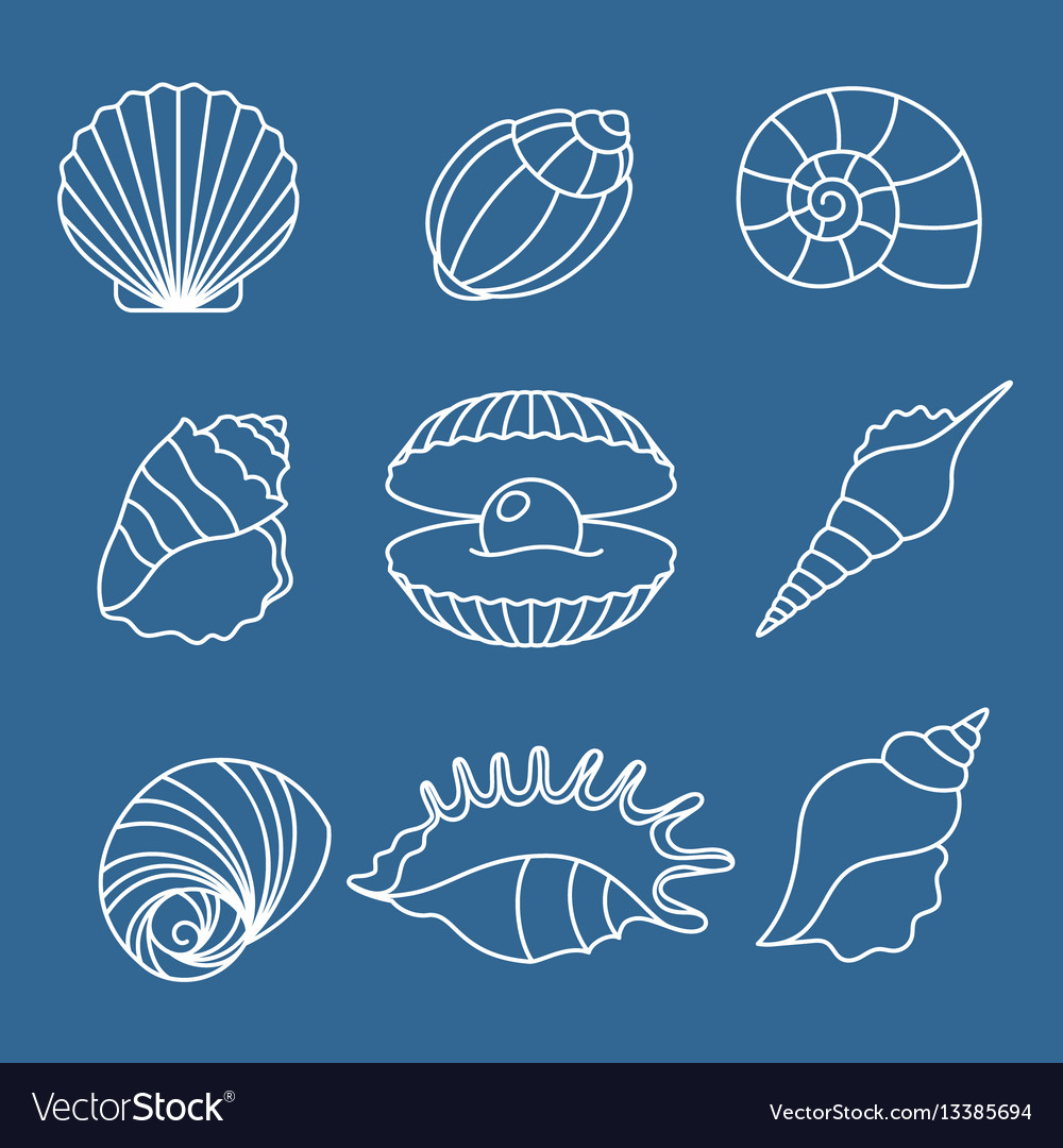 Sea shell outline icons on blue
