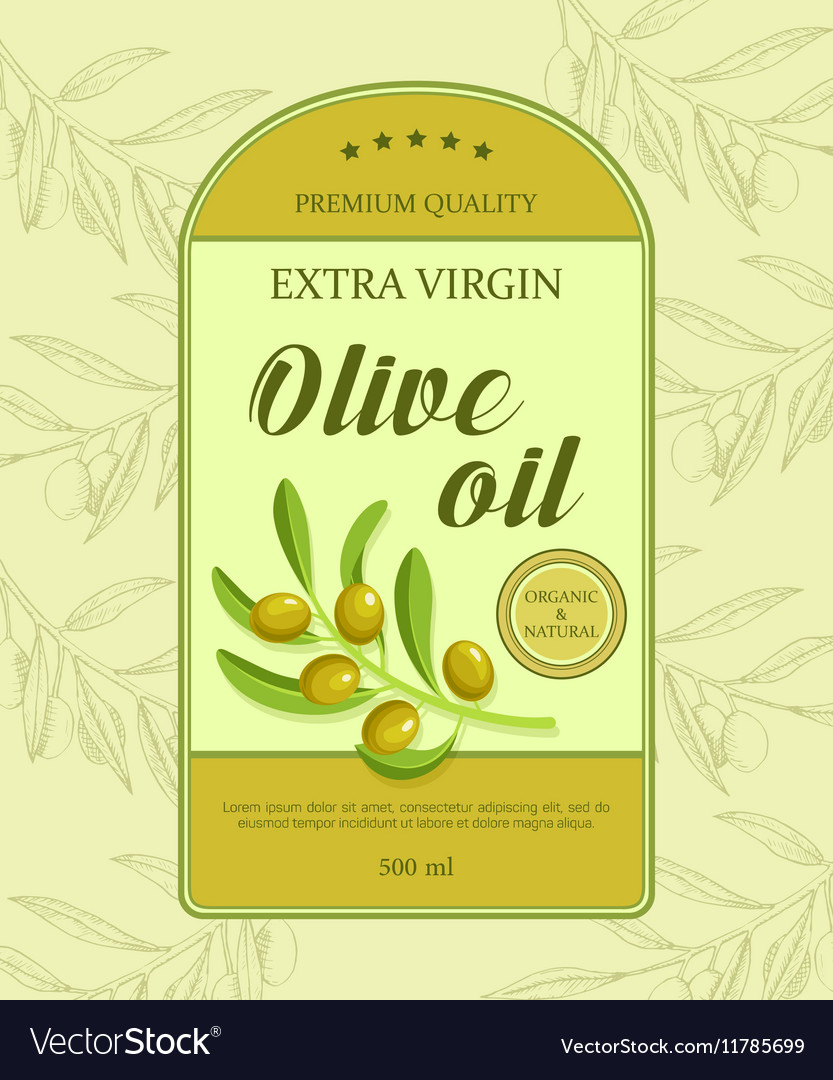 Beautiful label for olive oil with green olive vector image
