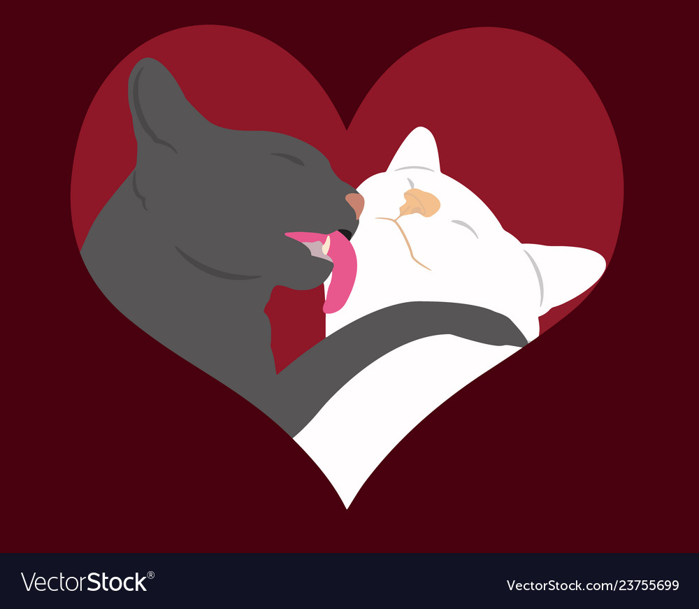 Cats in love heart
