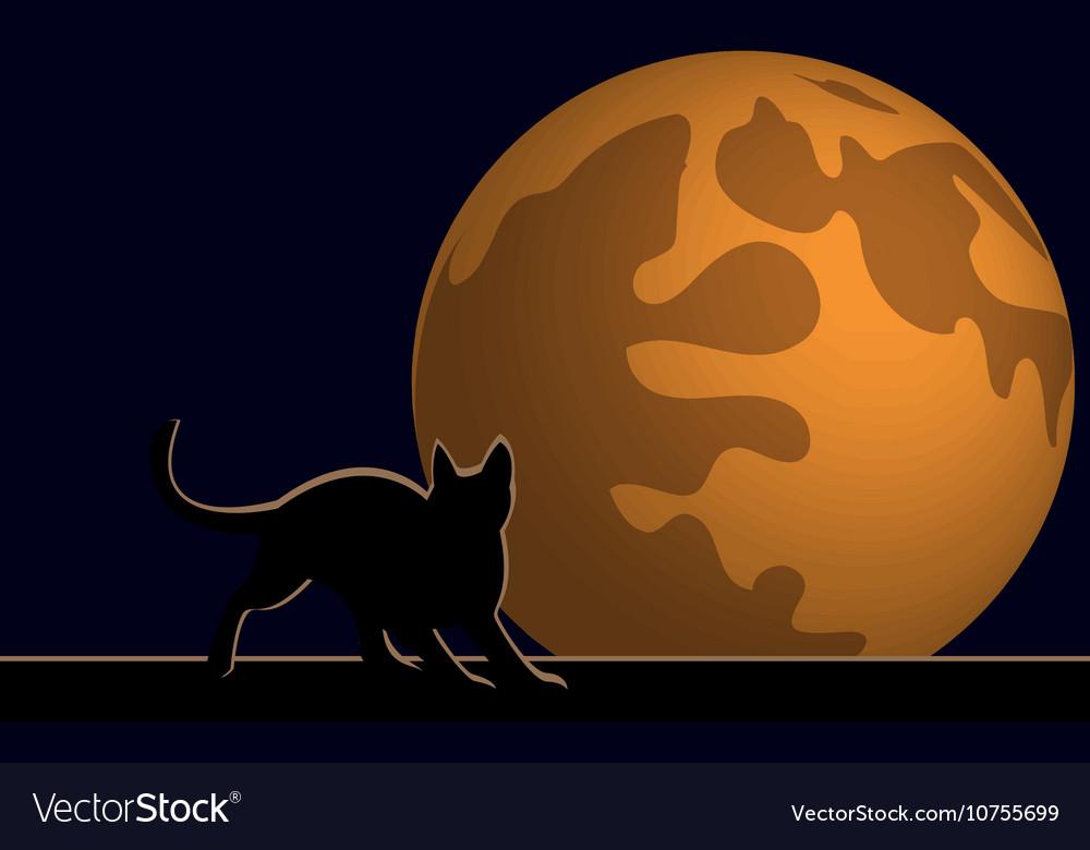 Wallpaper halloween moon cat