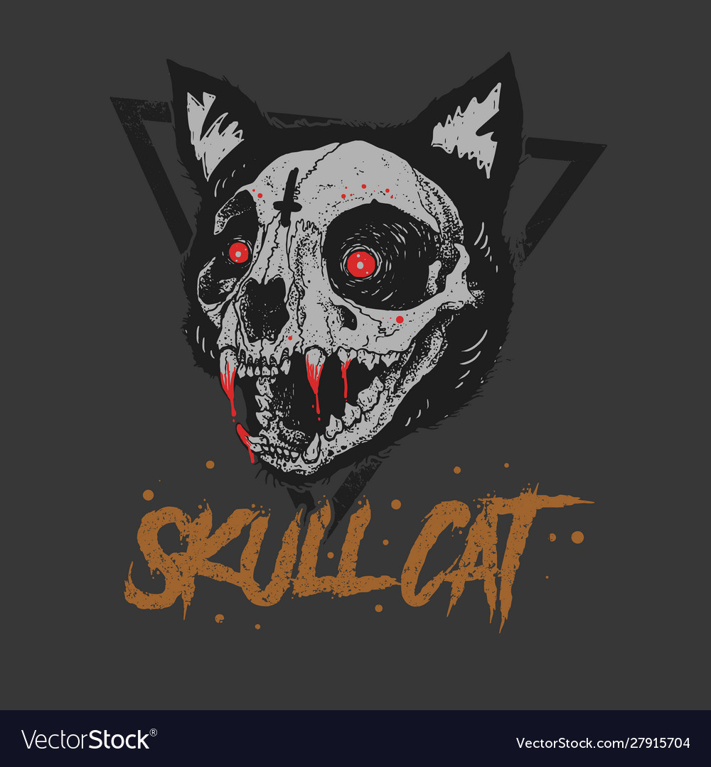 Cat skull bloody