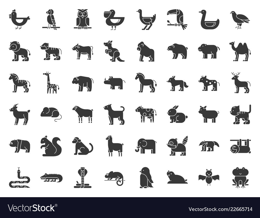 Big set of safari arctic forest animal and bird