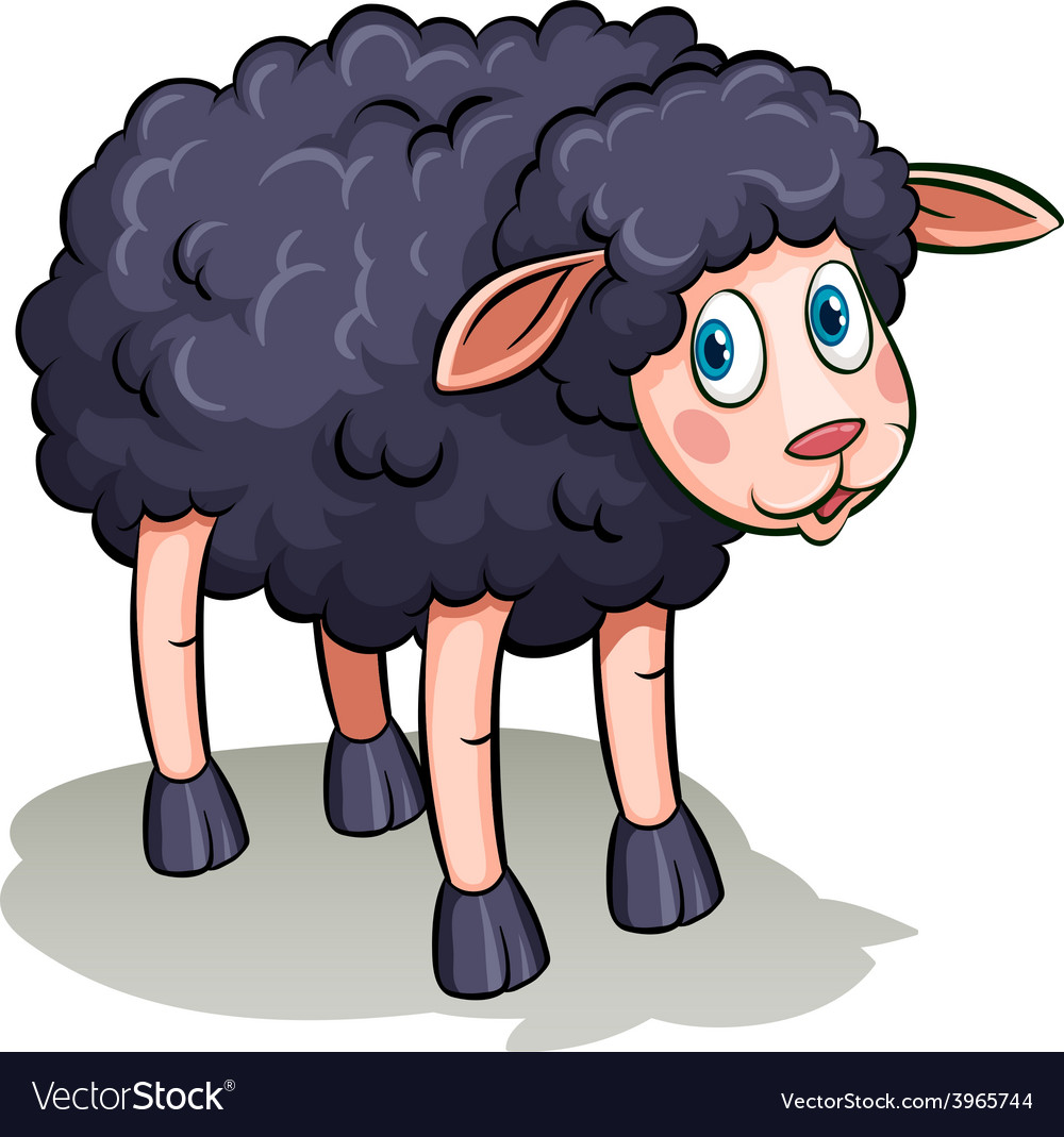 A black sheep vector image