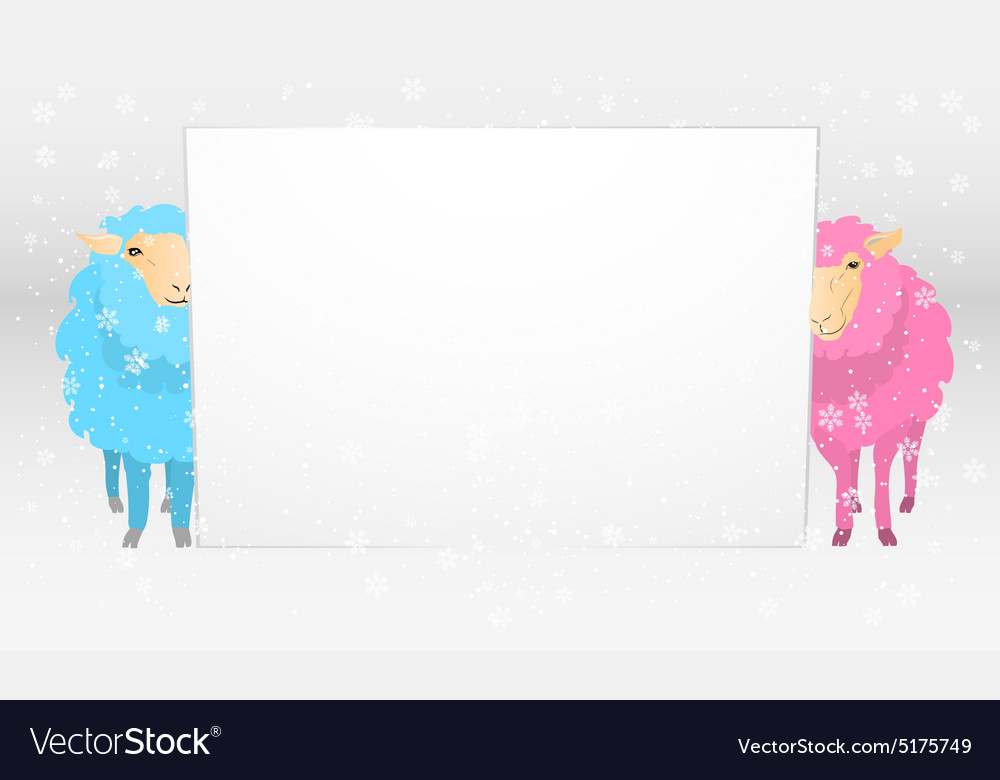 Banner with sheeps