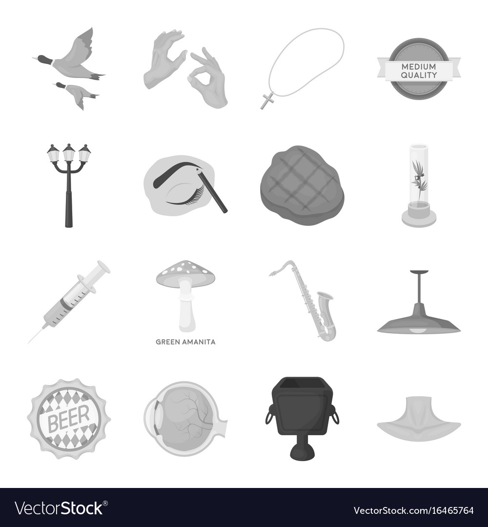 Park hunting beaut and other web icon in vector image