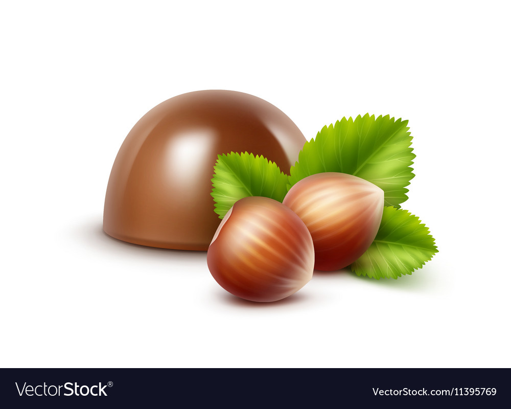 Milk Chocolate Candy with Hazelnuts on Background