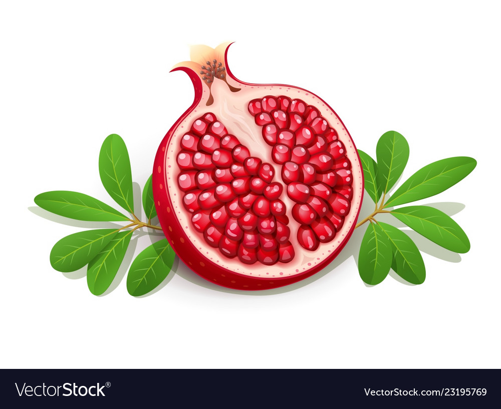 Ripe juicy pomegranate fruit