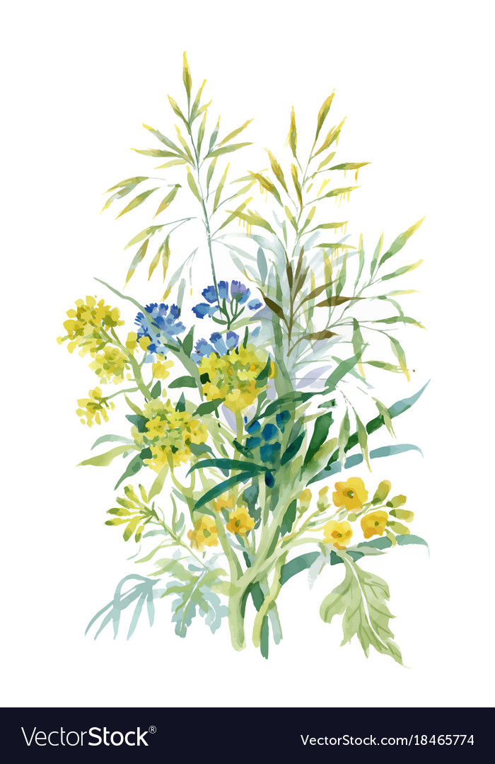 Watercolor wildflowers and leaves on white