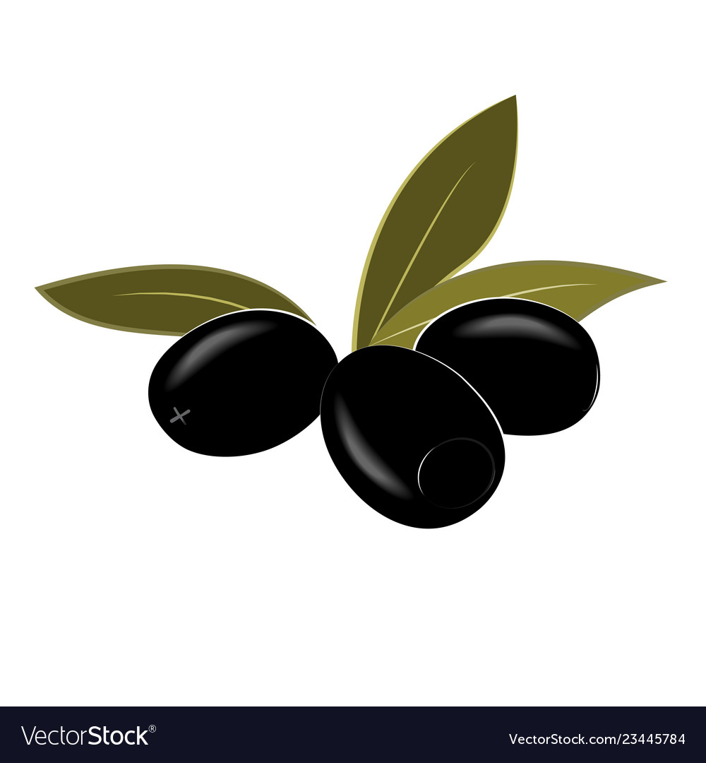 Cartoon black pitted olives