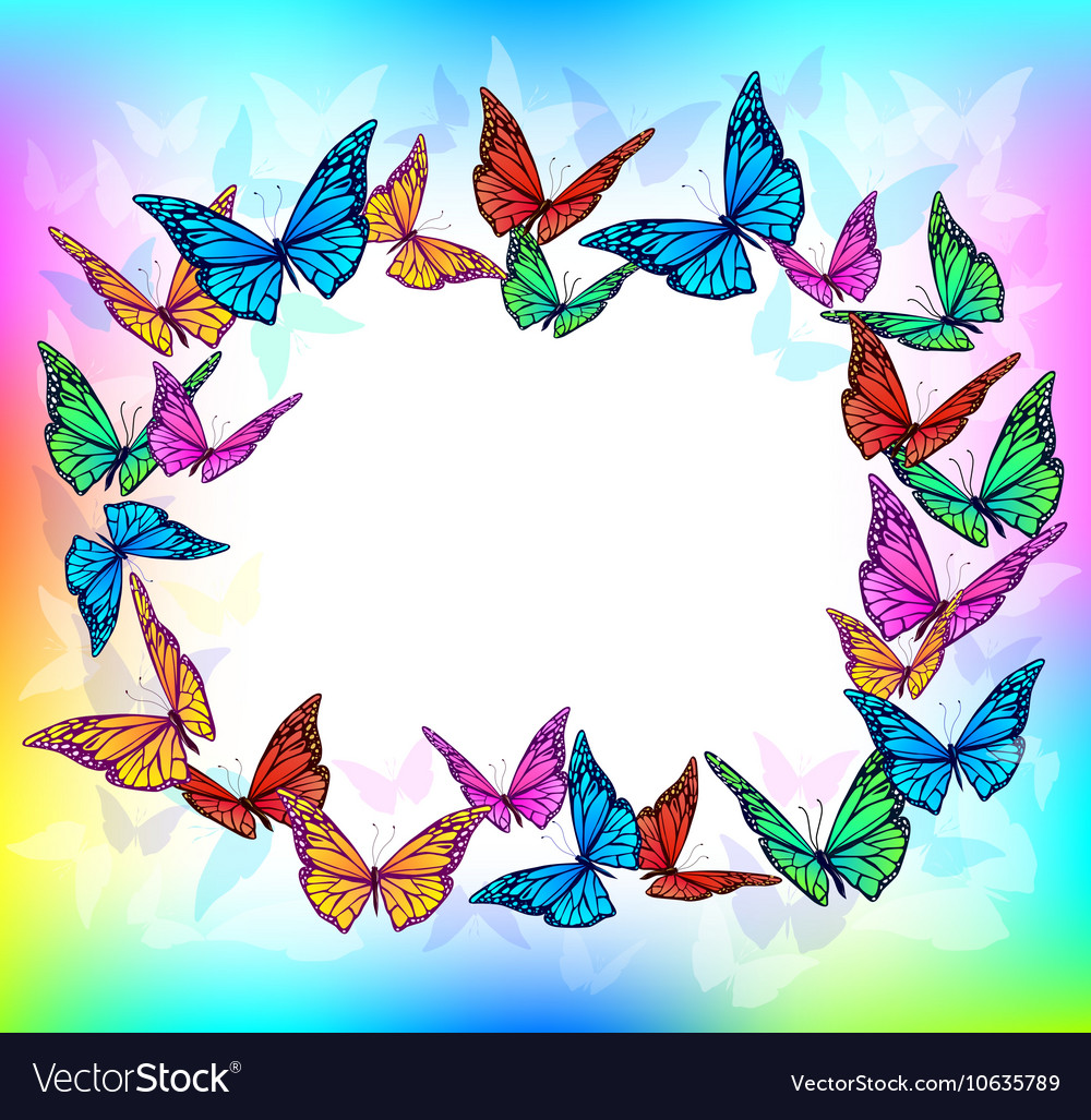 Bright butterfly blank frame Royalty Free Vector Image