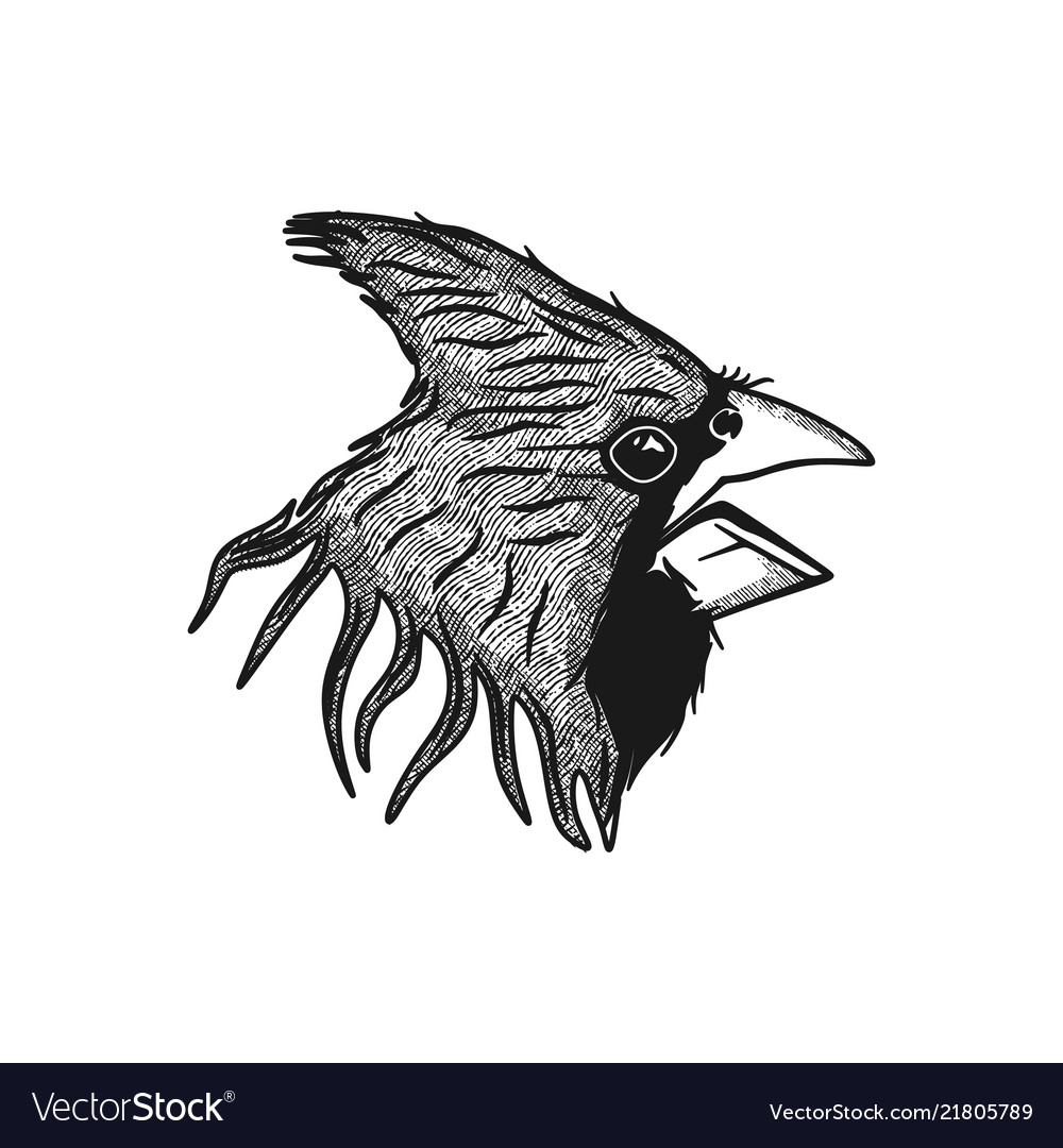 Head bird logo design inspiration