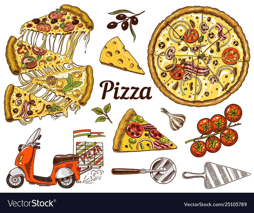Set pizza with cheese yummy italian vegetarian