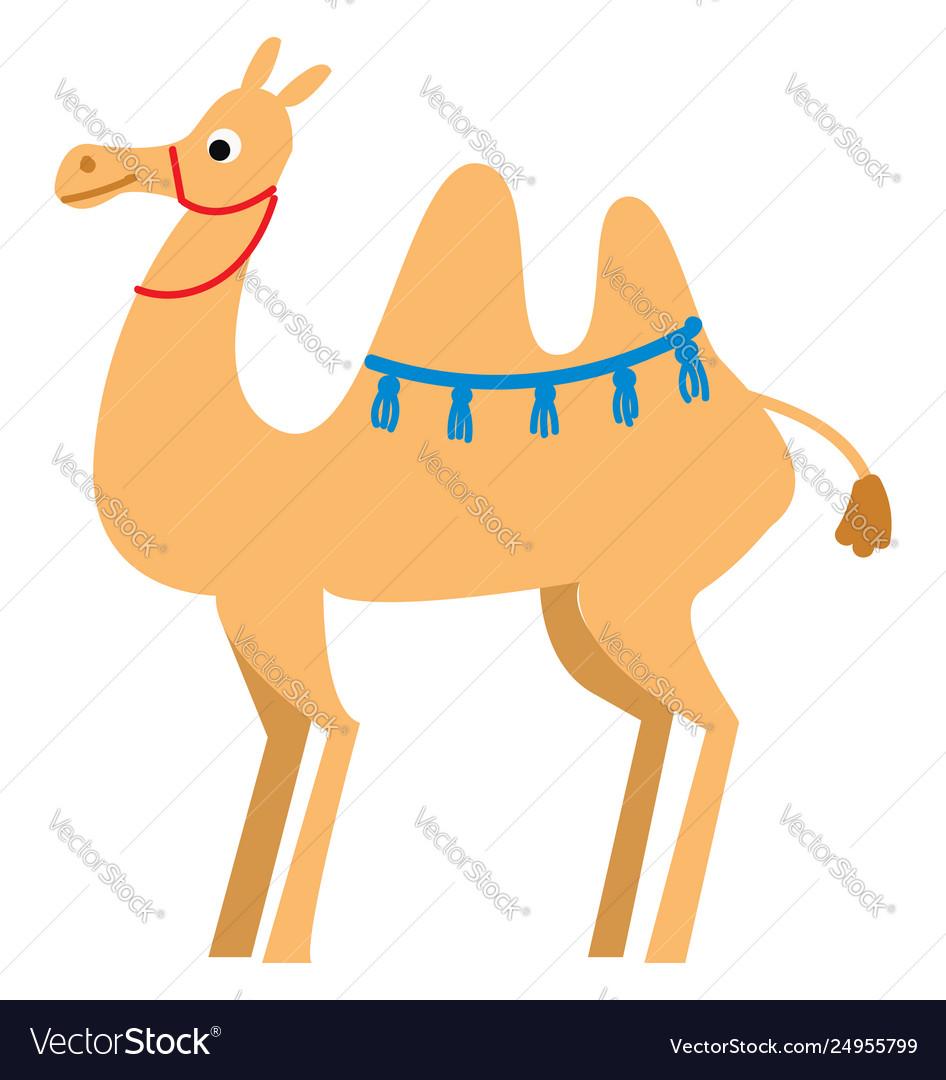A light brown camel in desert or color