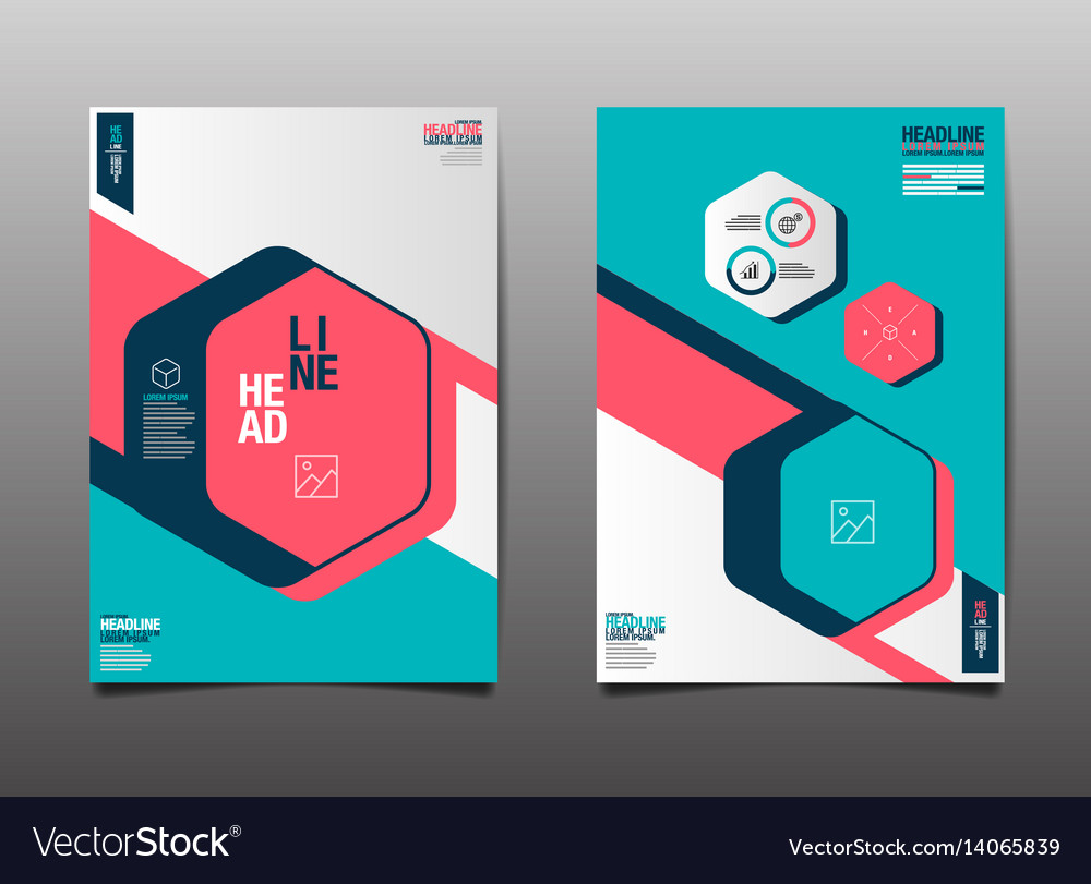 Template design layout brochure flyer vector image