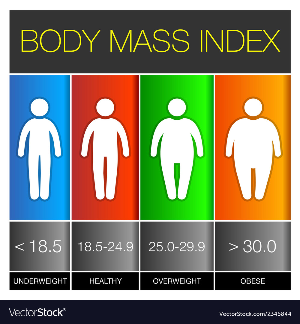 body mass index infographic icons royalty free vector image