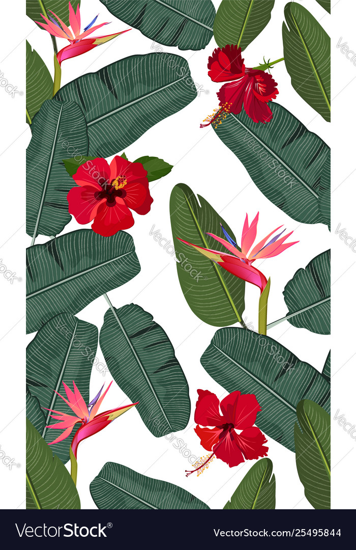 Seamless pattern banana leaves with red hibiscus