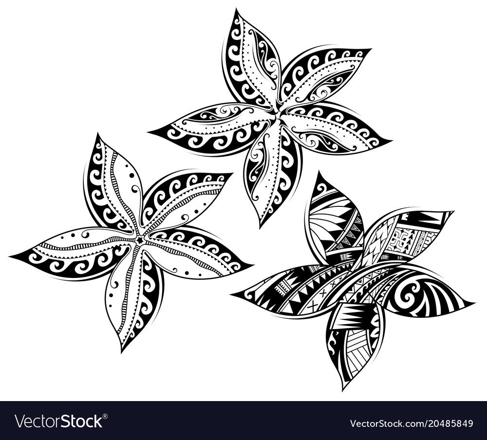 Plumeria Flower As Tribal Style Tattoo Royalty Free Vector