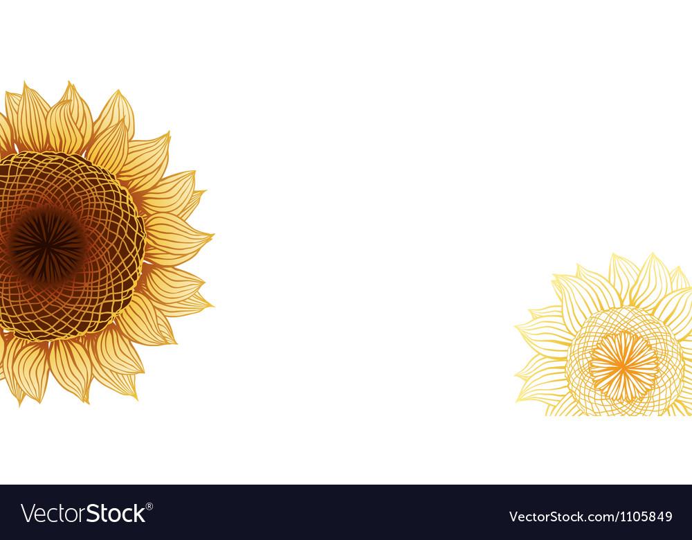 Yellow sunflowers flower element for design