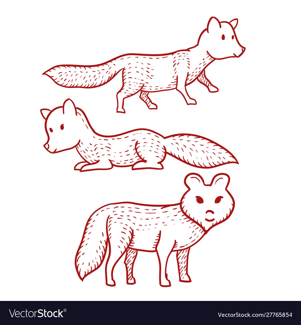 Dog or wolf or fox hand drawn on white background