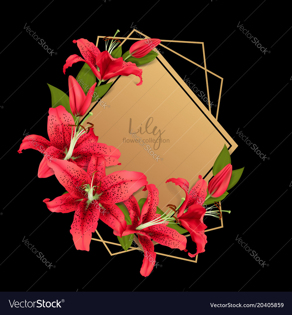 Wedding invitation with red lily flowers vector image izmirmasajfo