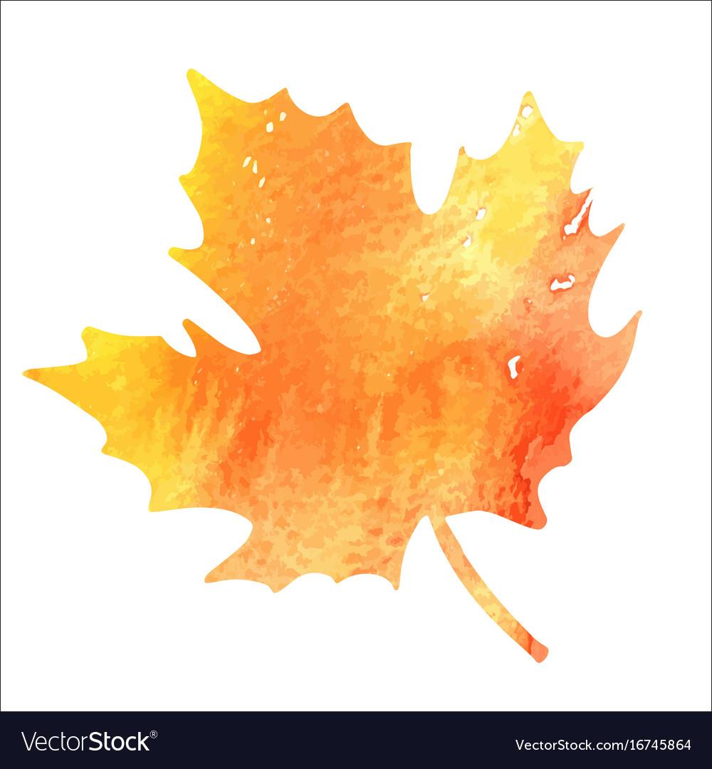 Bright orange watercolor autumn maple leaf