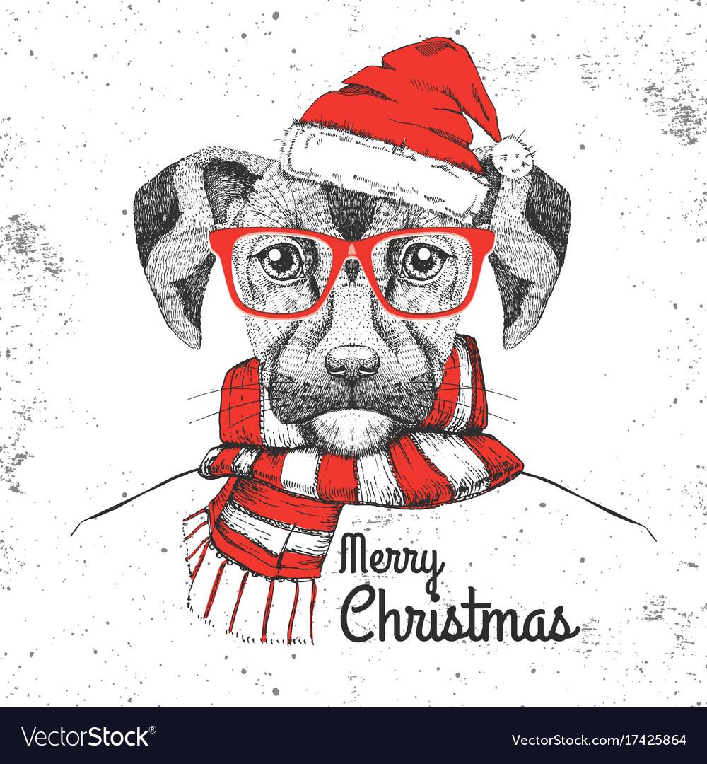 Christmas hipster fashion animal dog