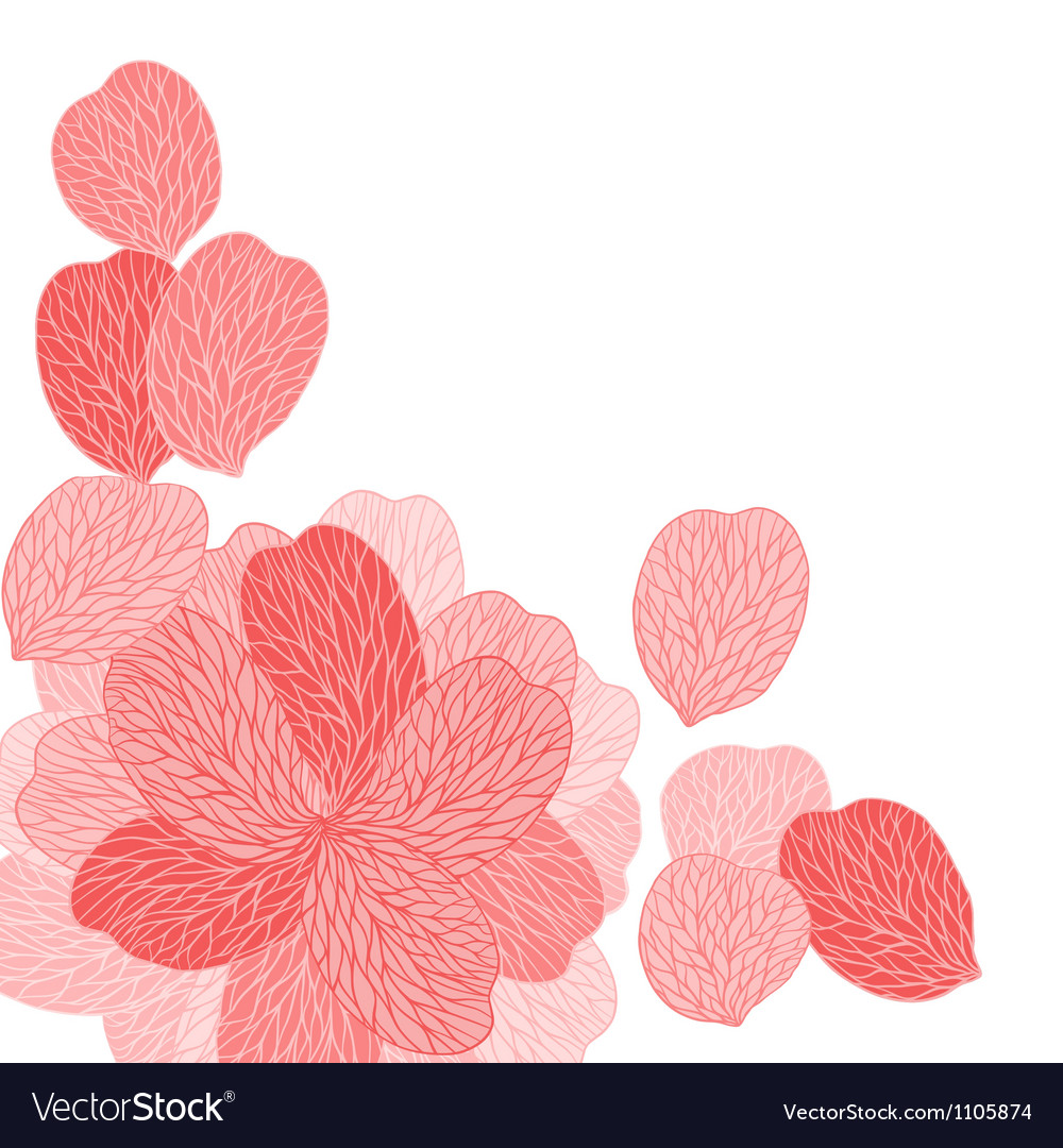 Background Of Pink Flower Petals Royalty Free Vector Image