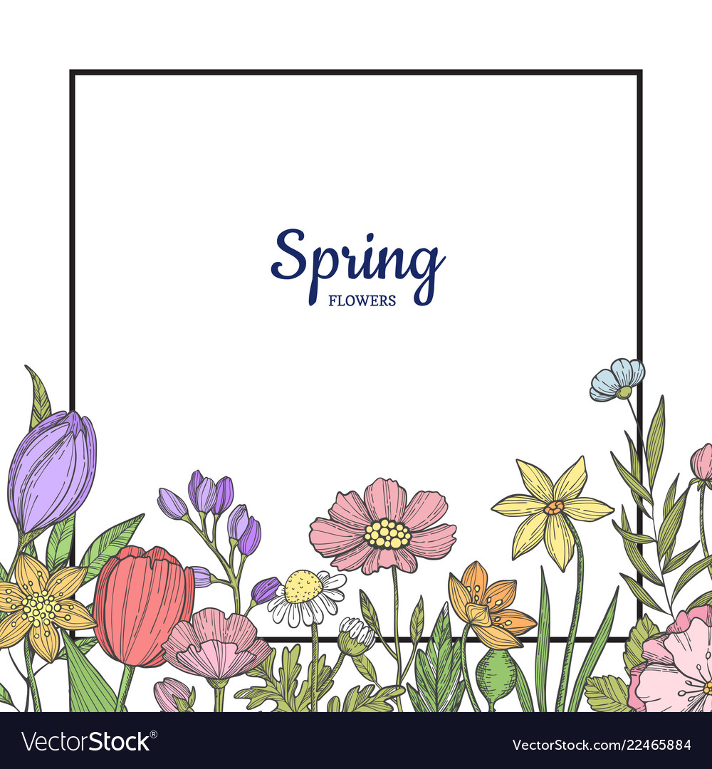 Hand drawn flowers background with place