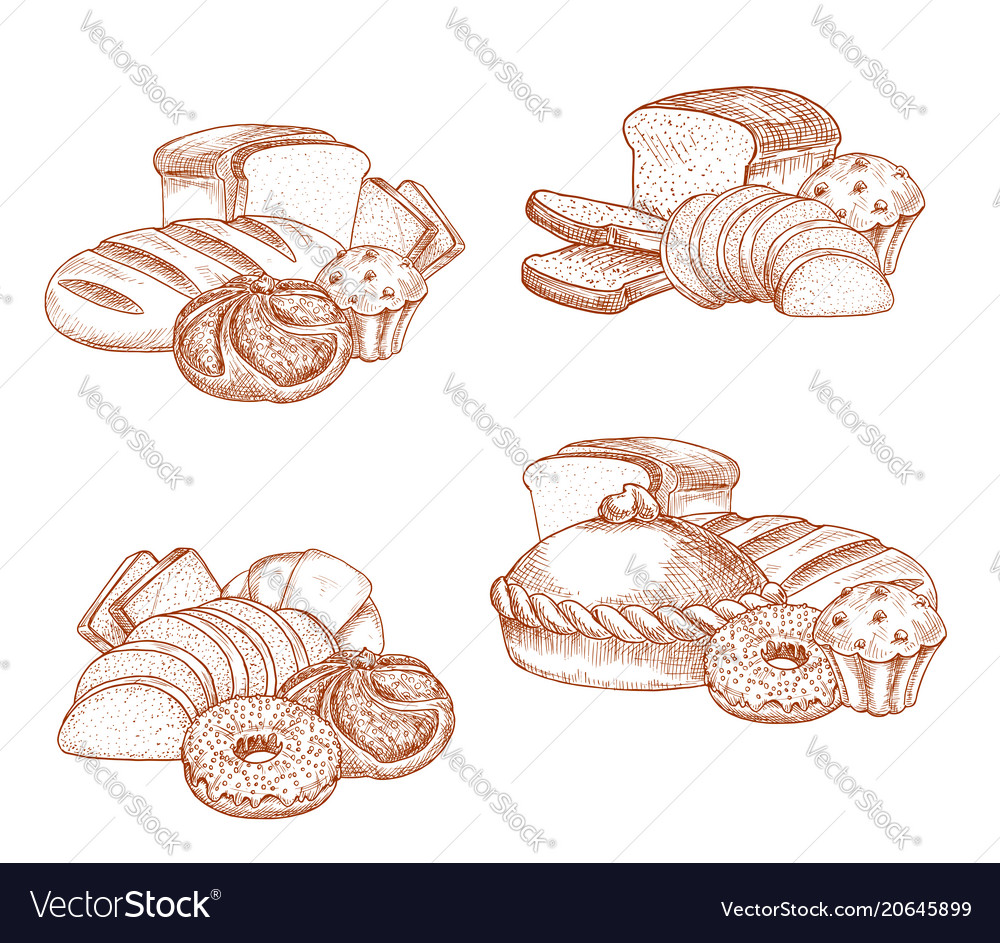 Bread and bakery or pastry sketch vector image