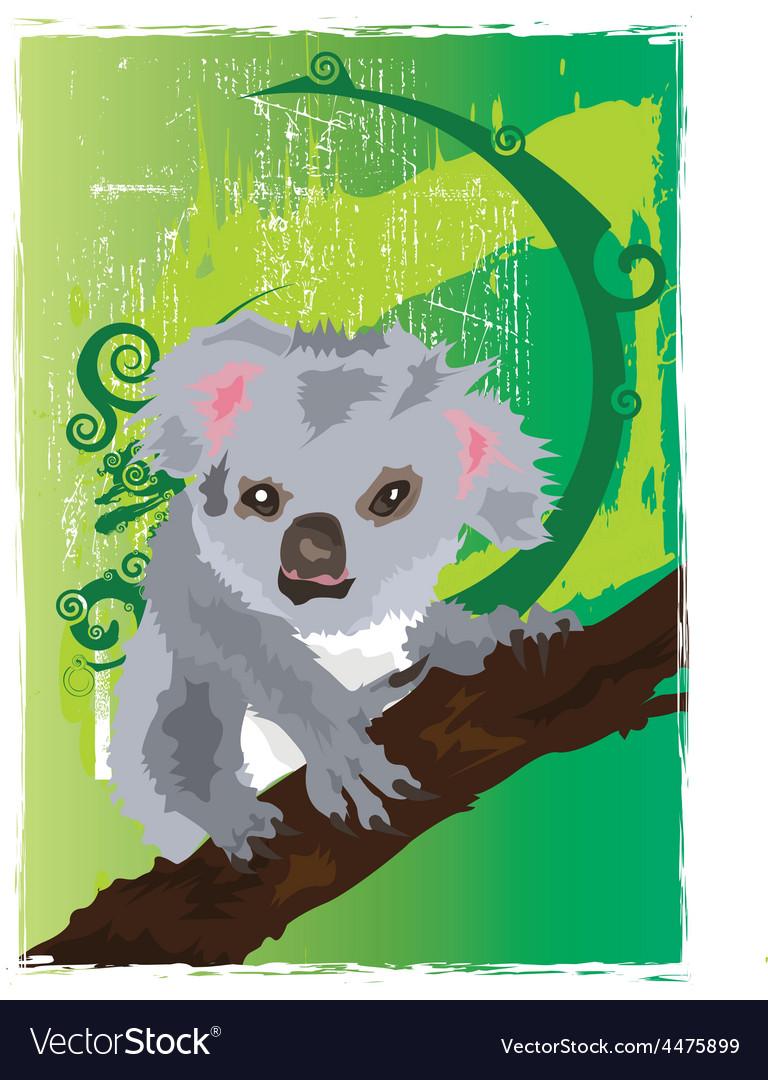 Koala cartoons