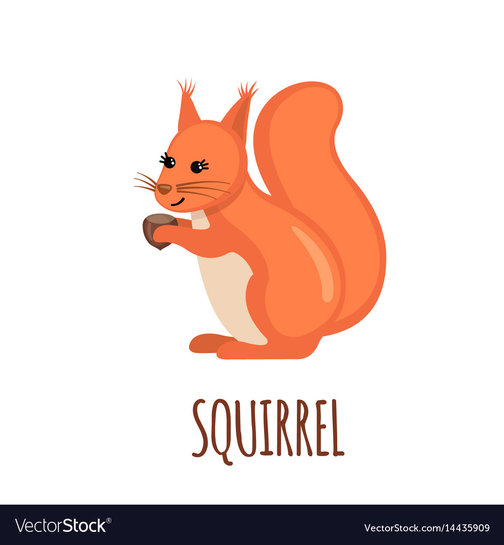 Cute squirrel in flat style