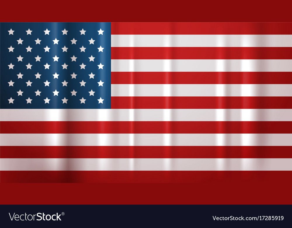 Usa Flag National Symbol United States Of America Vector Image