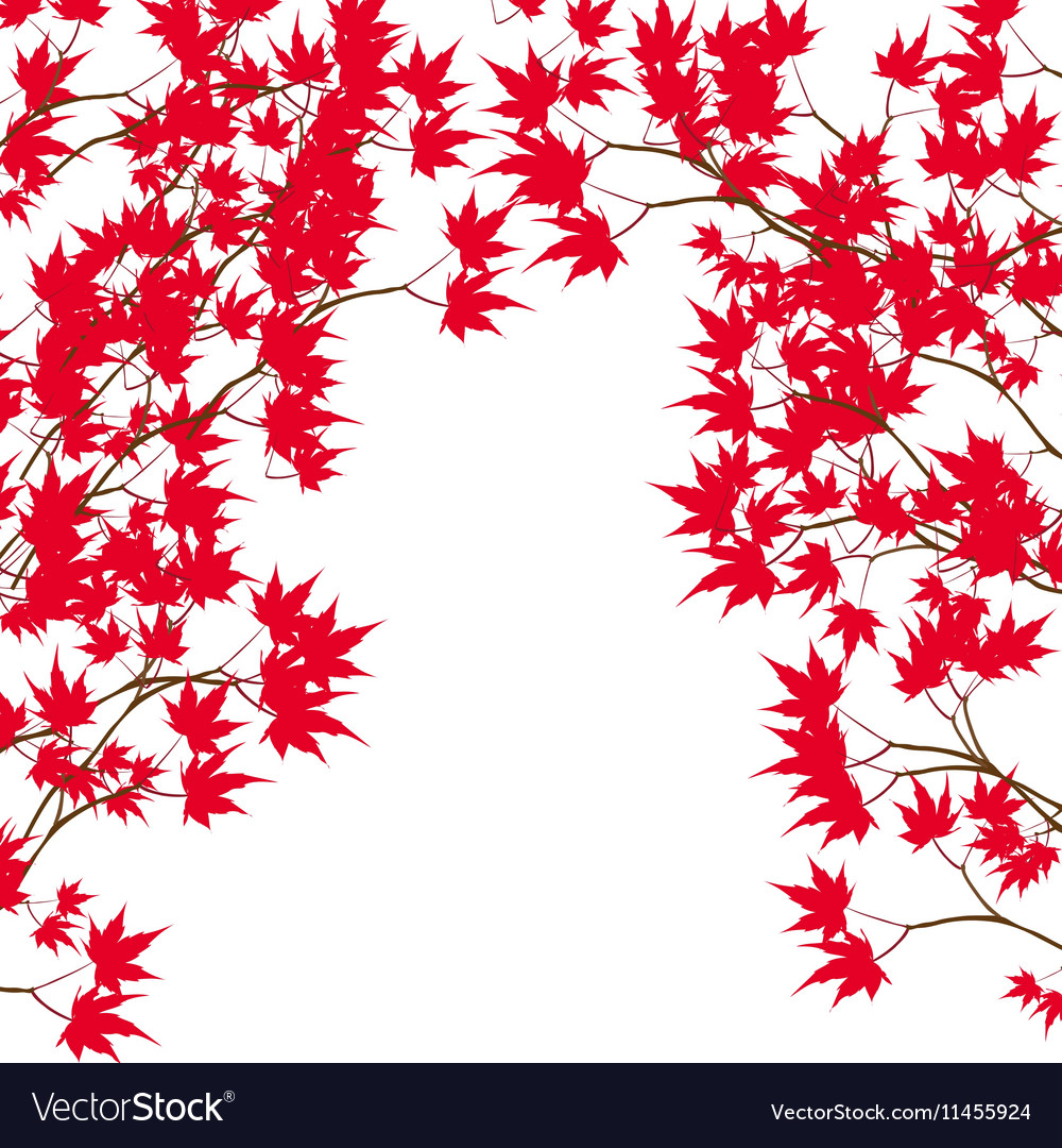 Greeting card Red maple leaves on the branches on