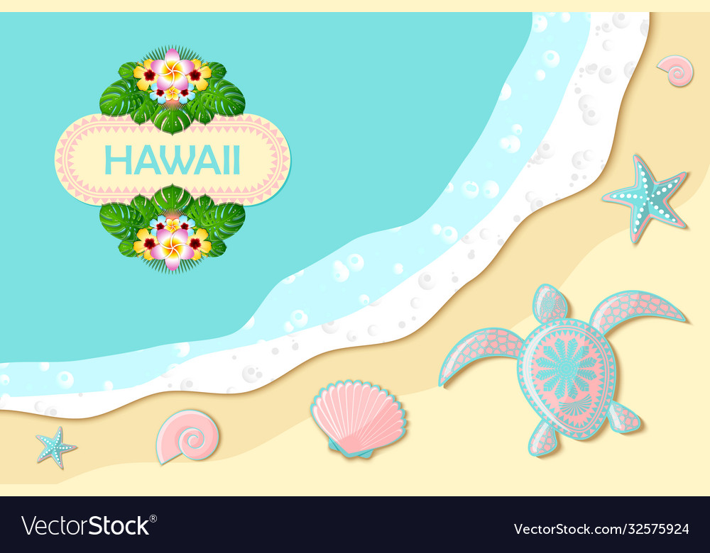 Top view seashore with sea waves turtle shells