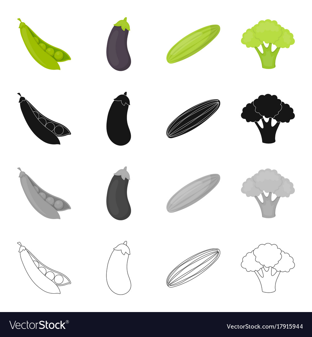 Food vegetable garden and other web icon in