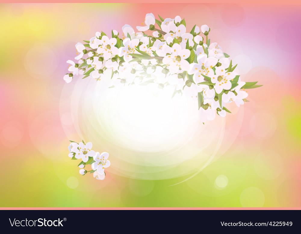 Spring frame flowers