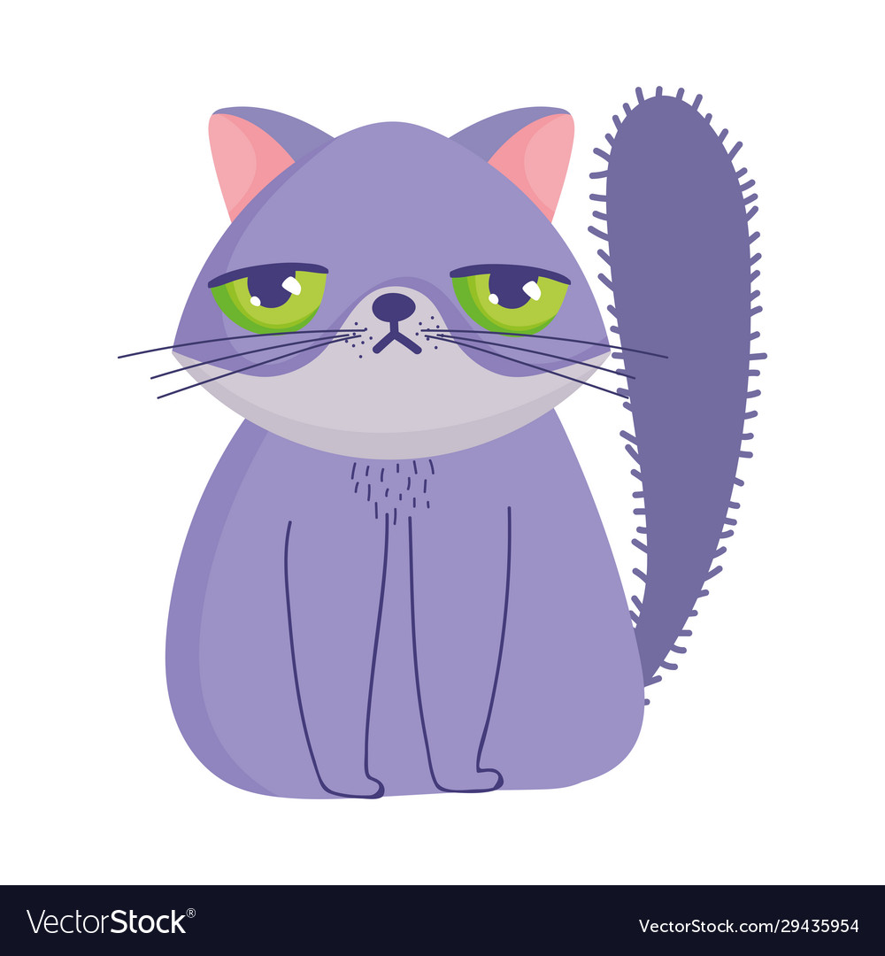 Grumpy Cat Cartoon Feline Character Pets Vector Image