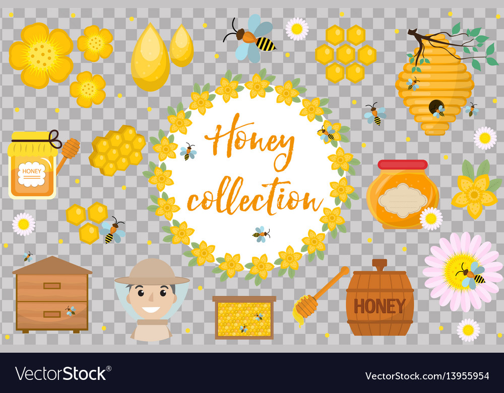Honey collection beekeeping set of objects