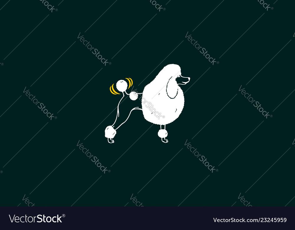 Poodle dog logo icon